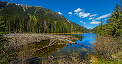 looking past the logjam on duffey lake - BC, canada (Russell Scott Images) Tags: canadianrockymountains britishcolumbia canada bc duffey lake