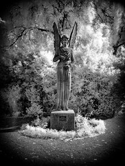 Michael the Archangel (Peter Cohn) Tags: ir infrared malm stpaulikyrkogrd scania skne sweden cemetery graveyard archangel angel statue michael