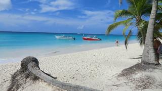 Dominican-Republic - Island of Saona - Boats & Palms & sandy beaches