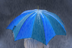 rain (alexander elzinga) Tags: sommer rain goodbye