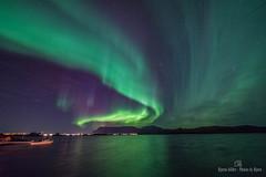 Nordlys (Bjrn Henrik Orm) Tags: nordlys northernlight aurora nikon d600 samyang rokinon 14mm lowlight norge brnnysund norway