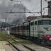 Gr. 740-244 - Treno del 1°Maggio alla stazione di Viareggio