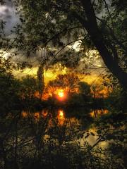 Sunset... (hobbit68) Tags: old sunset sky clouds strand alt main himmel wolken sonne wald bltter bume baum sonnenschein ringexcellence
