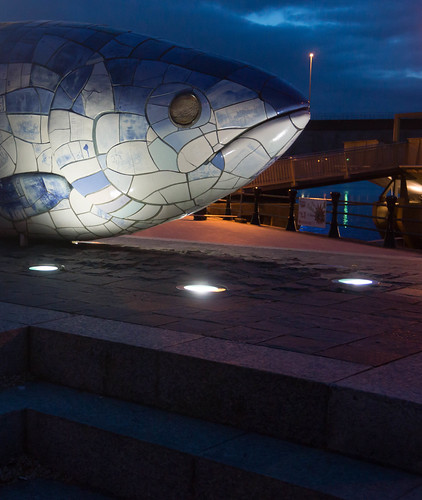 THE BIG FISH AT NIGHT [BY JOHN KINDNESS] REF-104719