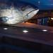 THE BIG FISH AT NIGHT [BY JOHN KINDNESS] REF-104719