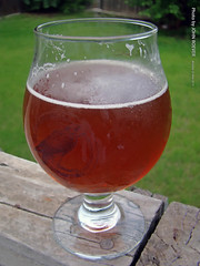 Copperhead Pale Ale, 25 May 2015 (photography.by.ROEVER) Tags: beer glass may ale 2015 freestatebrewery copperheadpaleale may2015 freestatebreweryglass