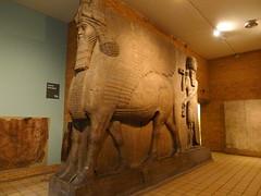 Taureaux ailés du Palais de Sargon - Khorsabad (Mhln) Tags: england london museum londres angleterre british ninive khorsabad assyrie