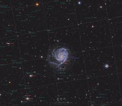 M101 Pinwheel Galaxy (Plate Solve Version)