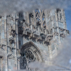 riflessi a milano (ewaldmario) Tags: italien italy water reflections mirror europe italia cathedral stones miracle dom milano details competition chiesa dome duomo riflessi spiegelung lombardy mailand piazzadelduomo pflastersteine ewaldmario
