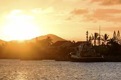 Kaori (cedric.harbulot) Tags: ocean light sunset sea mer water port de landscape soleil boat nikon eau lumire sigma wave bateau vague nouvellecaldonie newcaledonia couch ocan paquebot nouma remorquer 18250mm d5300
