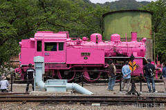 Pink SL at Wakasa Railway (7) (double-h) Tags: sl tottori jnr steamlocomotive c12   eos6d  ef2470mmf4lisusm  pinksl wakasarailway  c12 c12167 wakasastation classc12 c12 sl