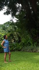 20160720_124131 (Mayan_princess) Tags: chiapas argovia finca resort caf coffee kaffee paraso paradise vegetacin vegetation verde green ro river spa relajacin relax forest selva orgnico autosostenible