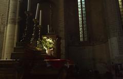 Light on the Flowers (MrBlackSun) Tags: abbey abbaye abbatiale saintrobert chaisedieu clement vi france auvergne hauteloire nikon d810