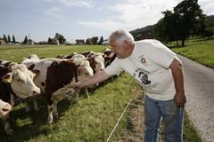 Powering the plant (Nestl) Tags: biogas farm farming farmer cows cow countryside manure renewable energy sustainability plant environment environmental