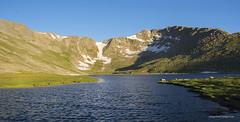 mt Evans Colorado (Pattys-photos) Tags: mt evans colorado woodchuck
