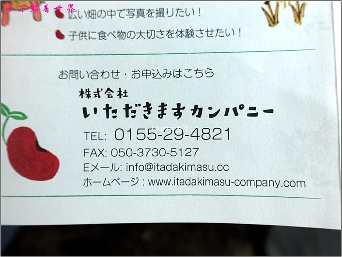 川野農場 DIY採玉米 (23).JPG