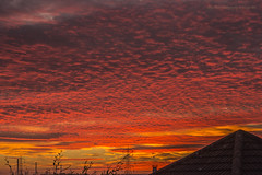 Autumnal Sunset (Glyn Owen Photography & Image-Art) Tags: apocalypse sunset colour red purple cloudscape roof chimney cheshire helsby dusk foliage uk outdoor sky cloud serene atomic