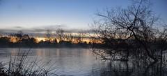 Alba sul fiume (emanuel.foglia) Tags: nikon alba fiume albero acqua inverno colori adda foschia d3200 farageradadda nikkor18105
