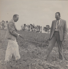 figuring out what to do with their land. 1940s (mel's old ads and mags) Tags: brazil blackandwhite male men brasil vintage outdoors earth candid formal 1940s land oldphoto brazilian elegant terra foundphoto forties baldmen 40s homens brasileiros vintagephoto fotoantiga brazilianpeople vintagefashion anos40 vintagepicture vintagemen vintagescan vintagemale anosquarenta vintagefashionformen vintagecandid foundinrio