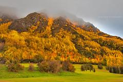 Mountainside Colour || ARROWTOWN || NZ (rhyspope) Tags: new autumn cloud mist mountain pope green fall nature field fog canon island town south zealand nz queenstown 5d arrow rhys arrowtown mkii rhyspope