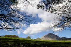 _DSC1880 (adrizufe) Tags: landscape durangaldea basquecountry bizkaia green nature naturaleza ilovenature aplusphoto nikonstunninggallery nikon d7000 ngc bluesky clouds ramas
