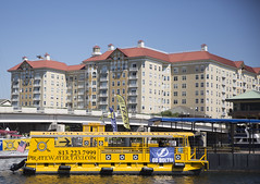 2016 Tampa Harbor Cruise (46) (maskirovka77) Tags: cruise tampa harbor us tour waterfront unitedstates florida dolphin pelican boattrip mansions funboat