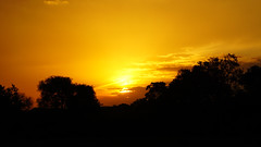 Suedafrika-19 (Lukas P Schmidt) Tags: sunset nationalpark krugerpark