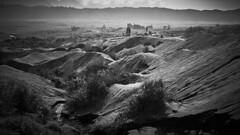 Life After Disaster (jipan) Tags: blackandwhite mountain indonesia landscape bush sand hill shrubs mountbromo
