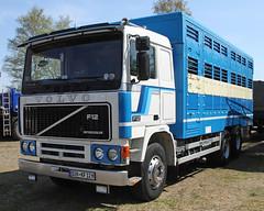 Animal transport truck (The Rubberbandman) Tags: old classic animal truck vintage germany pig volvo sweden transport swedish lorry german vehicle swine transporter intercooler wilhelmshaven lastwagen f12 lkw laster