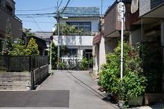 (23fumi) Tags: street japan alley sony sigma  osaka  30mm     nex6 sigma30mmf28dn