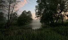 morning (2) (MarcelXYZ) Tags: morning trees lake nature water canon landscape foggy pejza drohiczyn cesarz marcelxyz