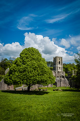 Different view of the Fountains Abbey (tbnate) Tags: sky tree nature abbey architecture clouds outside nikon ruins outdoor yorkshire fountains fountainsabbey northyorkshire d5100 nikond5100 tbnate