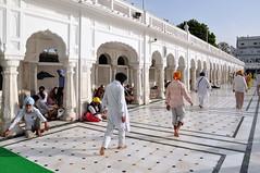 India - Punjab - Amritsar - Golden Temple - 319 (asienman) Tags: india sikh punjab amritsar gurudwara goldentemple harmandirsahib asienmanphotography
