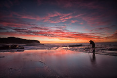 Focus (RoosterMan64) Tags: longexposure seascape sunrise landscape au australia nsw newsouthwales warriewood rockshelf turimettabeach