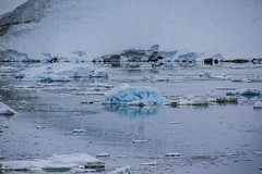 Lemaire Channel _MG_6753 resized (Robyn Aldridge) Tags: sea white snow seascape mountains colour texture ice water canon reflections landscape outdoors coast rocks wasser ship patterns shoreline shapes antarctica textures shore icefloes coastline iceberg seashore icebergs seas waterscape icescape antarcticpeninsula akademikioffe lrcc canon7d oneoceanexpeditions