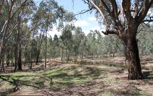 Lot 358, Armours Road, Binalong NSW