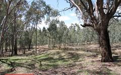 Lot 358, Armours Road, Binalong NSW