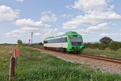 Regional Alentejano (Nohab0100) Tags: train allan casa railway railcar cp alentejo regional branca comboio automotora 0350