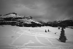 San Juan Mountains (Curtis Gregory Perry) Tags: winter bw white snow storm black mountains cold nikon colorado cloudy snowy tracks sanjuan icy snowmobile d800e