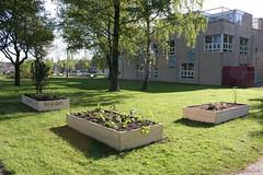 Huigpark Leiden - Singelpark (Vrienden van het Singelpark) Tags: water leiden groen burger doe het tuin gemeente vrienden planten bloemen hout verf zelf speeltuin spelen sporten vogelhuisje initiatief singelpark schoffel bloembak singels verbeteringen kweektuin houtsnippers huigpark