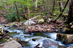 Santa Fe del Montseny (Gatodidi) Tags: santa parque naturaleza rio del landscape agua nikon arboles paisaje pantano bosque salto catalunya fe parc catalua rocas piedras cascada montseny d90 paisatje bartcelona