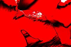 Opossum's Nightmare - der Traum der Beutelratte (gripspix (OFF)) Tags: plant abstract nature natur pflanze petal tulip imagination processed abstrakt tulpe bearbeitung bltenblatt vorstellungskraft 20160505