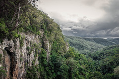 Australian Rainforest (S_Simon) Tags: clouds forest rainforest au queensland australien vally springbrook hinterland springbrooknationalpark australianrainforest