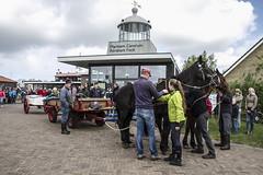 2016-Ameland018 (Trudy Lamers) Tags: wadden ameland eiland paarden reddingsboot reddingsactie