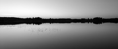 Lake scene (Antti Tassberg) Tags: windows blackandwhite bw lake monochrome smart silhouette espoo finland landscape evening twilight phone cell acer serene wp ilta 58 jrvi uusimaa pitkjrvi iphoneography acers58 liquidjadeprimo