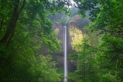Latourell (terenceleezy) Tags: oregon portland waterfall waterfalls pdx columbiarivergorge latourell