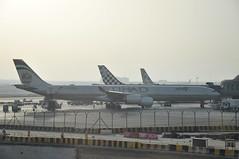 AUH: Terminal 1 (A380spotter) Tags: turnaround airbus a340 600hgw a6ehf  etihad etihadairways etd ey ey20h ey0091 auhath gate11 eleven stand102 a6ehj abudhabigrandprix2016 formula1 f1 formulaone logojet ey0653 auhcai gate10 ten stand103 terminal1 one abudhabiairportscompanyadac  abudhabiinternationalairport omaa  dawlatalimrtalarabyahalmuttaidah unitedarabemirates uae