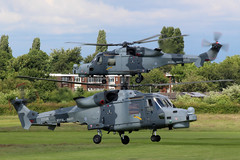 Black Cats (NTG's pictures) Tags: the royal navy blackcat helicopter display armed forces day blackcats 825 nas rnas yeovilton westland lynx wildcat hma2