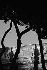 (Chaoqi Xu) Tags: 2015 5d canon chaoqi xu photo italy italia fotografia foto eos city citt photography roma rome travel viaggio              beni culturali monumento ferrara napoli firenze florence naples sicilia sicily venezia venice milan milano turin torino bologna palermo catania siracusa messina agrigento vatican statua statue arte art bw bianco nero black white genova ritratto portrait  history storia