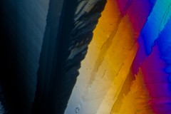 Caffeine by Polarized Light Microscopy (Trav H) Tags: light coffee crystals colours cola tea melt caffeine polarized microscope chemicals ans microscopy caffiene plm cns micrograph birefringence heliconfocus microart microscopeart heliconremote adobelightroomcc